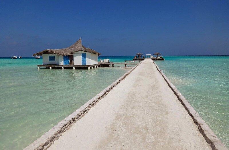 przewodnik po Malediwach