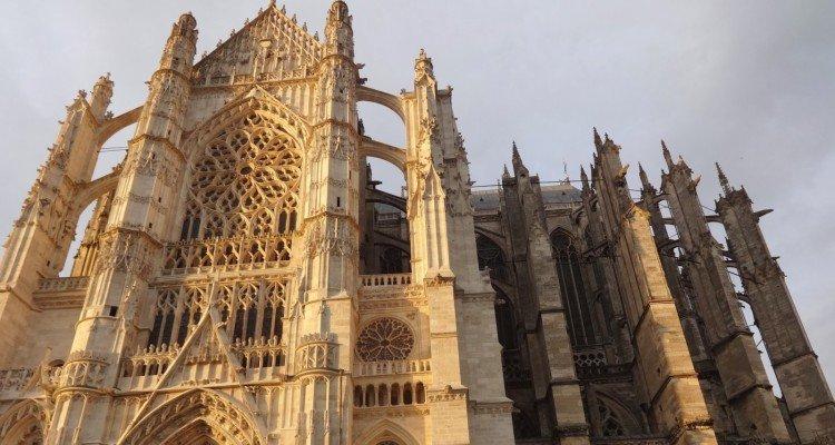 katedra beauvais