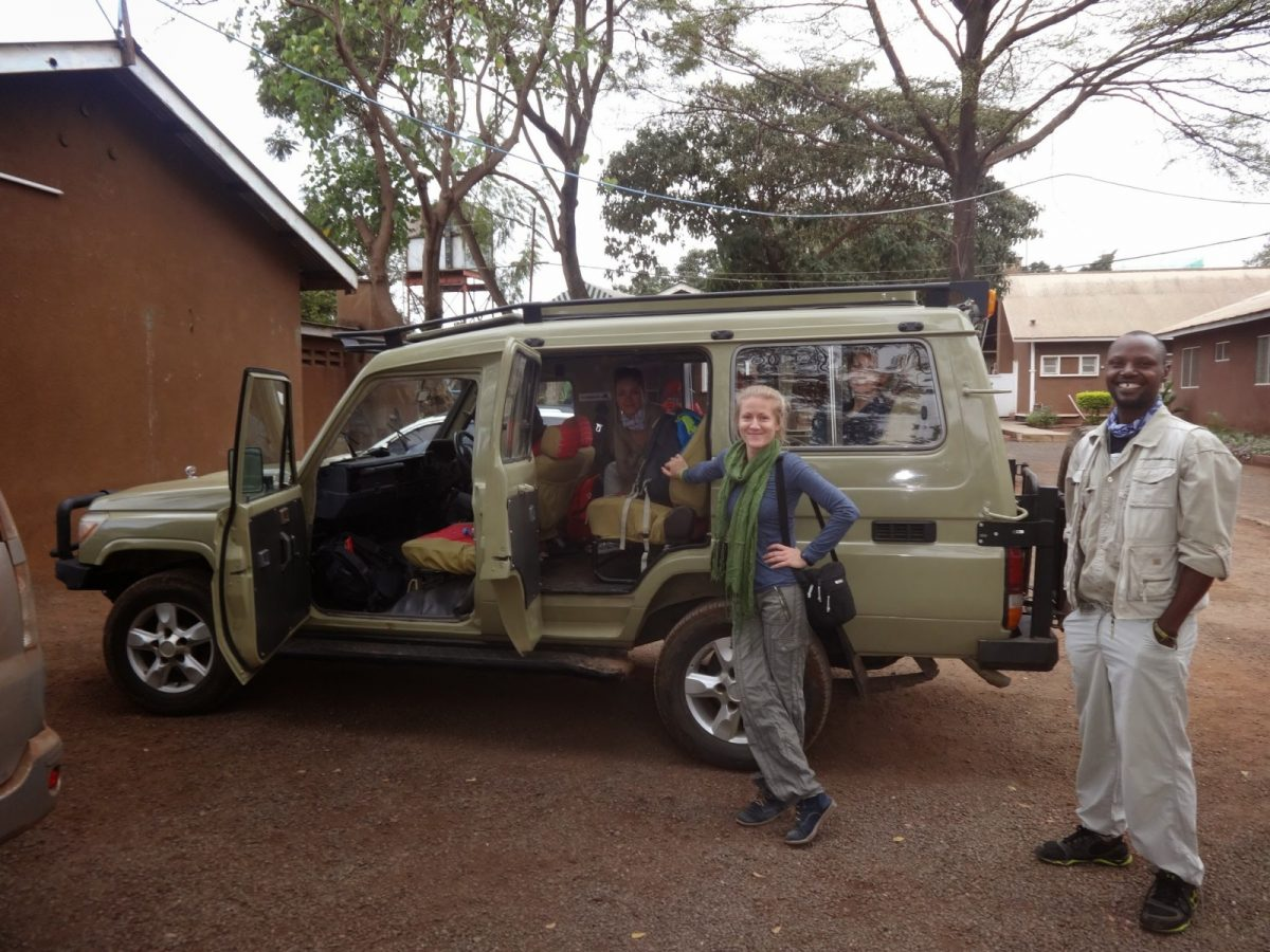 Moshi baza wypadowa na safari