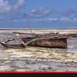 Zanzibarskie plaże w wyCELowanej kamerze