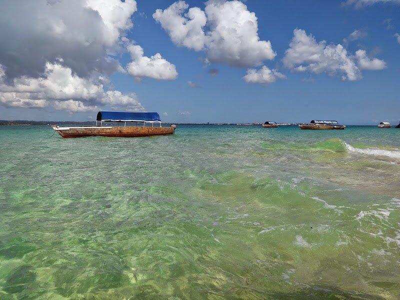 wycieczka na Prison Island na Zanzibarze