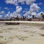 Karibu Jambiani, karibu Shehe