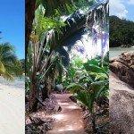 Wyspa Praslin – gdzie plażować i co zobaczyć