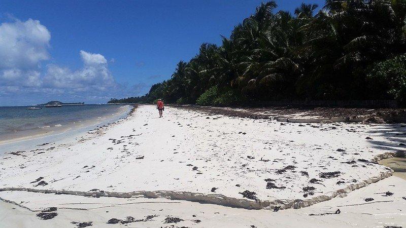 Seszele wyspa Praslin - gdzie plażować