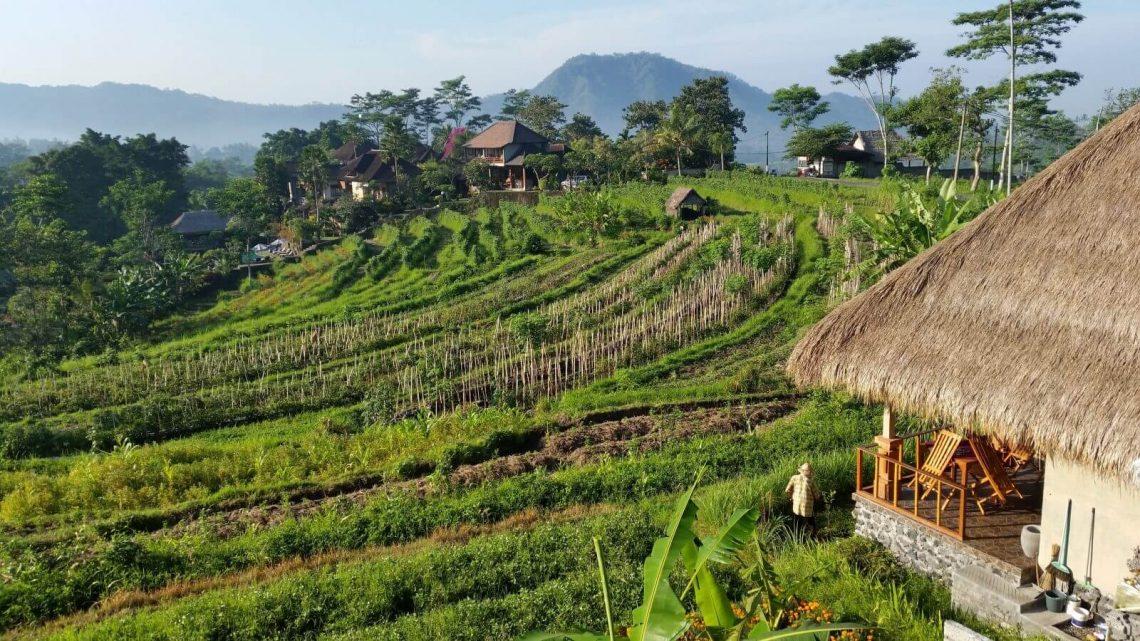 Gdzie spać na Bali