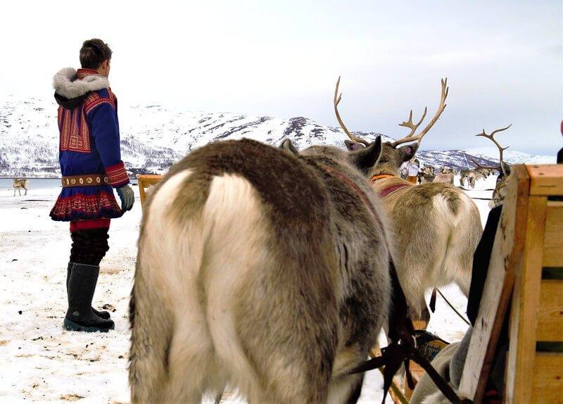 wycieczka do obozu Saamów w Tromso
