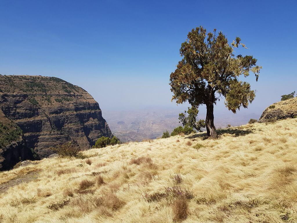 trekking w Górach Simien Etiopia