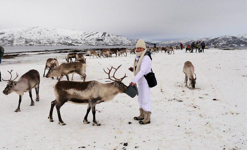 Saamowie w Tromso