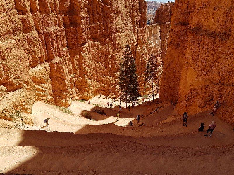 zachodnie stany USA parki narodowe