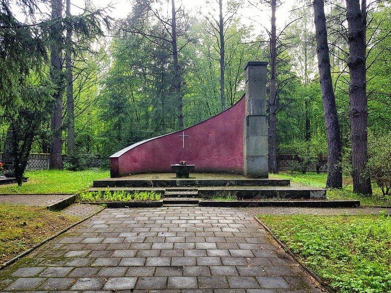 co warto zobaczyć w Białowieży i okolicach