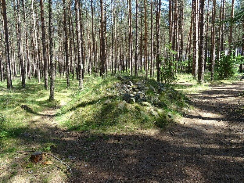 cmentarzysko Gotów w Węsiorach