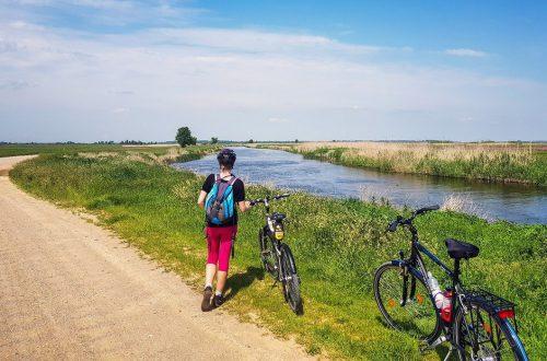 szlaki rowerowe w Biebrzańskim Parku Narodowym