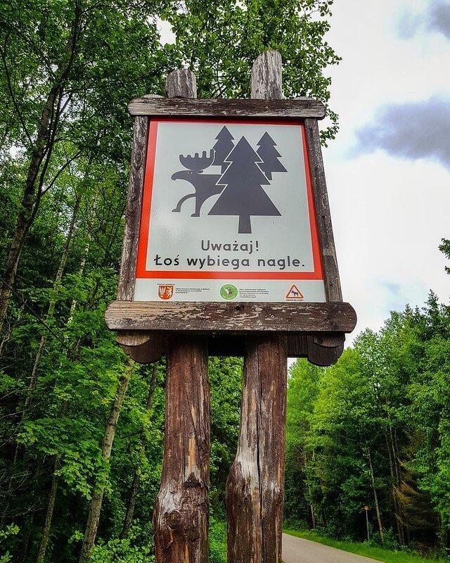 szlaki w Biebrzańskim Parku Narodowym