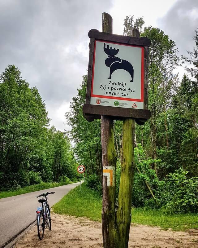 rowerem w Biebrzańskim Parku Narodowym