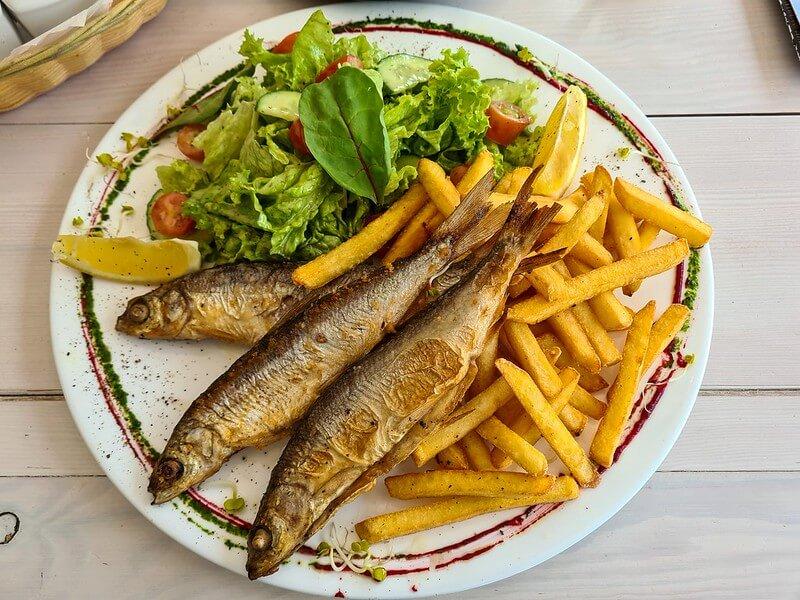 mazurskie ryby